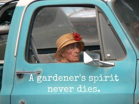 A gardener's spirit | Gardening Life | Scoop.it