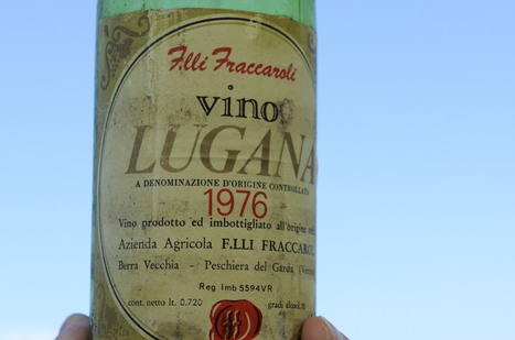 Will the future ever forgive us if we fail to save Lugana? | The Wine Hub | Wine lovers unite! #winelover | Scoop.it