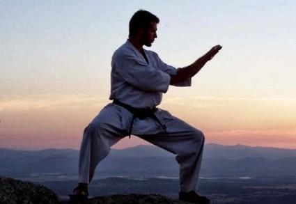 L'importance du Kata pour Karate-Blog.net | Kamae do Blog | Scoop.it