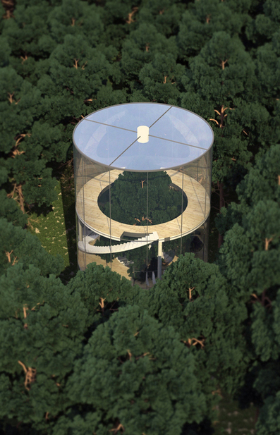 Tree in House: Glass Cylinder Wraps Five-Story Fir in Forest | Everywhere | Scoop.it