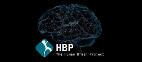 The Human Brain Project Has Begun Building the Super Brain | The Brain: Structures, Functions, and News | Scoop.it