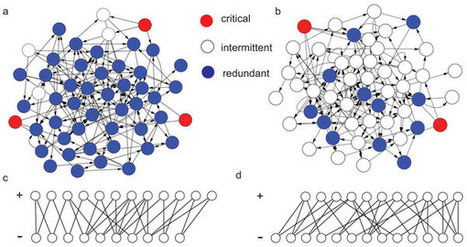 Connecting Core Percolation and Controllability of Complex Networks | Information, Complexity, Computation | Scoop.it