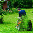 Why it is better to hire a professional landscaping contractor | The Grass Guy | Scoop.it