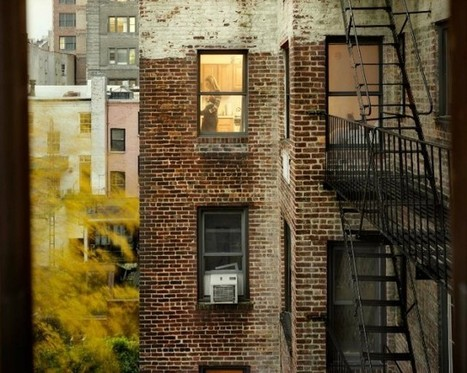 Out My Window | Culture &c. | Scoop.it