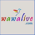 India Classifieds   News   Forums   Yellow Pages   Travel   Events   wawalive   Scoop.it