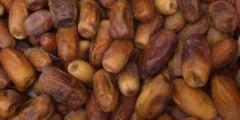 La datte : un produit sous-estimé par les industriels - Agro Media | Actualité de l'Industrie Agroalimentaire | agro-media.fr | Scoop.it
