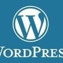 WordPress 3.8.2 : Mise à jour de sécurité critique à déployer | Libertés Numériques | Scoop.it