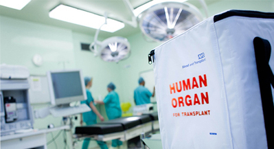 Bedfordshire professor authors new organ donation strategy in the United Kingdom | Organ Donation & Transplant Matters Resources | Scoop.it