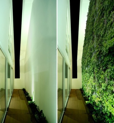 A Slice Of (Green) Life In The Azores - EarthTechling | Vertical Farm - Food Factory | Scoop.it