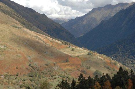 Les rousseurs de la haute Vallée d'Aure | Didier Puech | Vallée d'Aure - Pyrénées | Scoop.it