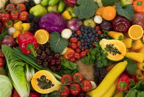 Notre corps est-il adapté à la consommation de viande ? Réponse aux arguments végétariens... | Planète Paléo | Scoop.it