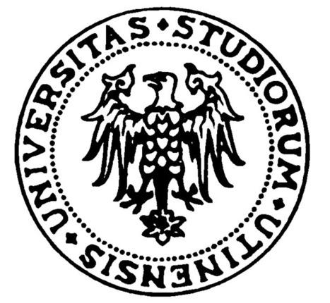 FIRB | Apprendere e Usare la Lingua Italiana con Risorse e Strumenti Web | Scoop.it