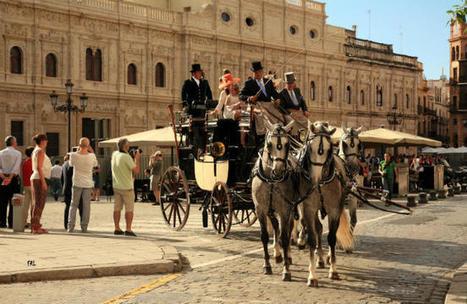 Los engaches de caballos vuelven a Sevilla en preferia | Caballo, Caballos | Scoop.it