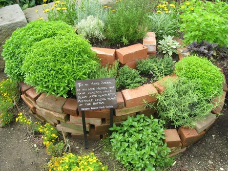 Spiral Herb Gardens | Bloomfield Hills Schools | Scoop.it