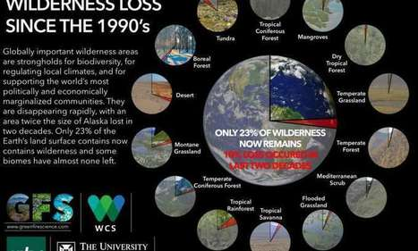A tenth of the world's wilderness lost since the 1990s, study finds | DSC Library | Scoop.it