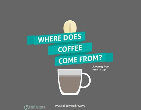 Where does coffee come from?   This-day   Scoop.it