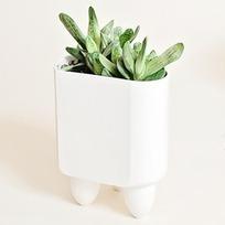 "The ""Elliot"" Modular Planter | designdrool | Scoop.it"