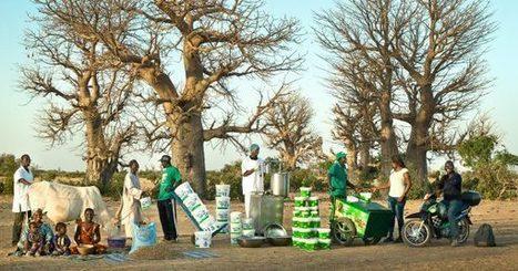 Sénégal : La laiterie du berger en quête d'identité | Questions de développement ... | Scoop.it