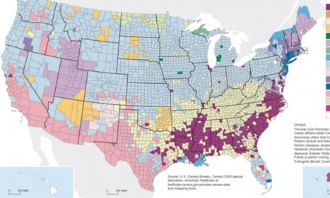 The map that shows where America came from: Fascinating illustration shows the ancestry of EVERY county in the US | multicultural | Scoop.it