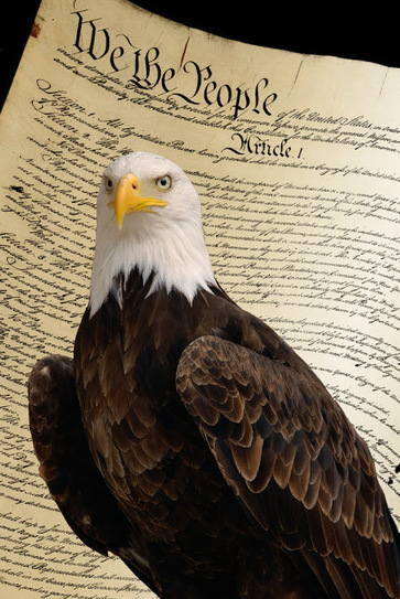 We the People... | Awakenings: America & Beyond | Scoop.it