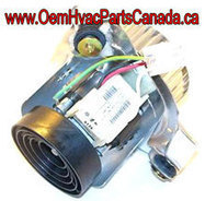 A.O Smith Inducer For Carrier 326628-762 replaces 326628-702, 326628-712, 326628762 | oemhvacpartscanada.ca | Scoop.it