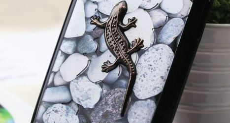 3D salamander on pebbles for Samsung galaxy S3 | Apple iPhone and iPad news | Scoop.it