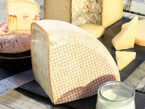 Produits laitiers riches en matières grasses ? Quel impact sur la santé ? | Dessiner sa Silhouette, Avoir la Maitrise sur Son Corps, et Se Sentir Bien au Quotidien... | Scoop.it