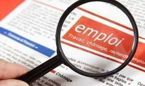 Proch'emploi vu par Pôle emploi : un Pôle emploi bis, sans la compétence professionnelle | Culture Mission Locale | Scoop.it