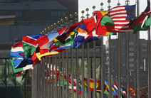 The UN in Brief | Topics in Geography | Scoop.it