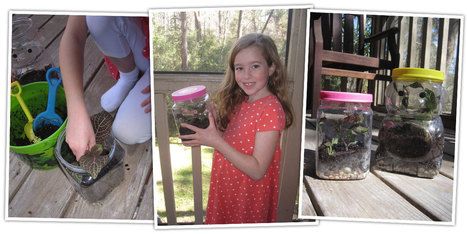 Teaching with Terrariums! | School Gardening Resources | Scoop.it