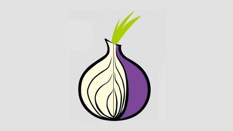 Le réseau Tor est truffé de nœuds-espions qui dénichent les services cachés | Veille Informatique par ORSYS | Scoop.it