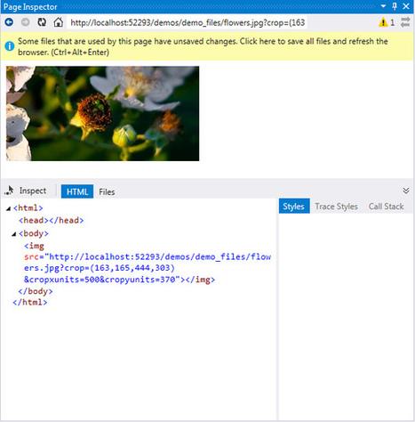 Jcrop e Visual Studio 2013 - codice a mano - DotNetCampania | codice a mano | Scoop.it