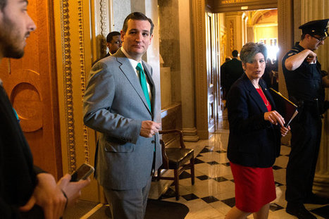 Ted Cruz Hopes Early Campaign Entry Will Focus Voters' Attention   AP Government & Politics   Scoop.it