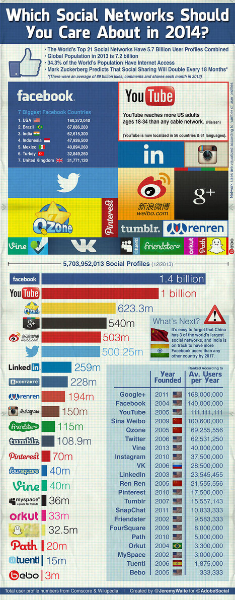 Which Social Networks Should You Care About in 2014? - Digital Europe | Vertaalbureautje in het grensgebied.... | Scoop.it