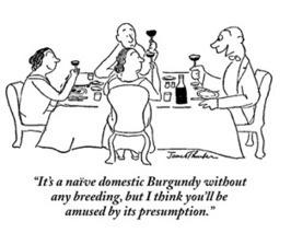 'Confusing' wine descriptions revealed | Autour du vin | Scoop.it