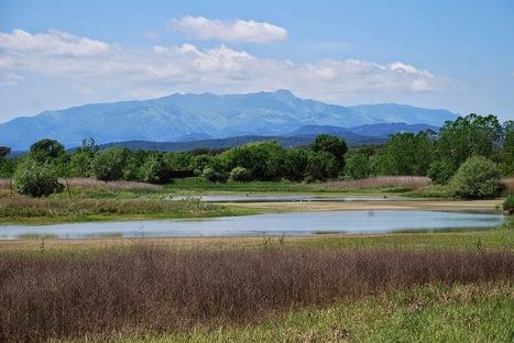 Pequeña montaña (senderismo en familia): Estany de Sils | La Selva 2.0 | Scoop.it