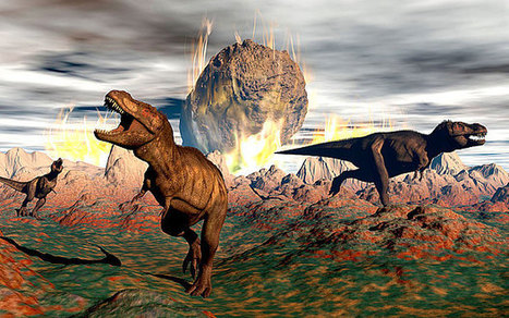 Earth has entered sixth mass extinction, warn scientists | Banco de Aulas | Scoop.it