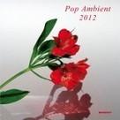 Pop Ambient 2012 (Kompakt) | Ambient Music | Scoop.it