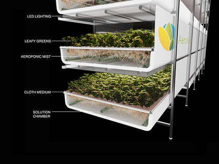 Industrial Plant to be Re-Developed into Mega-Indoor Vertical Farm Factory | Green & Sustainable News | Scoop.it