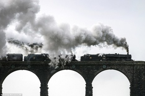 Amazing pictures of steam train rolling through English countryside | Railway anthology | Scoop.it
