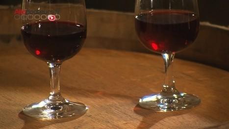 Un bar à vin... en soins palliatifs #SoinsPalliatifs | Médecins Hôpital Prescriptions | Scoop.it