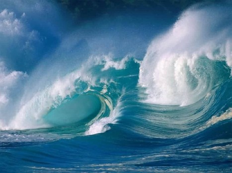#Chaos in the #Oceans ~ saying its too late sends #polluters unspoken message to continue their #destruction ! | Rescue our Ocean's & it's species from Man's Pollution! | Scoop.it