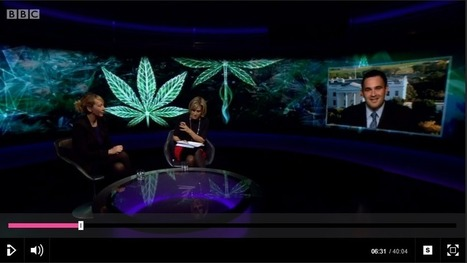 Cannabis regulation hits the UK press | Transform: Getting Drugs Under Control | Mental Health and Substance Use Issues in Youth | Scoop.it