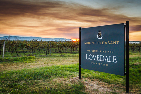 Wheel turns full circle at Mount Pleasant winery in Hunter Valley | Australian Wine Companion | Viticulture | Scoop.it