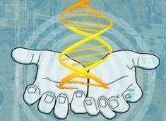 Controversial Gene-Editing Approach Gains Ground | Estudios de futuro | Scoop.it