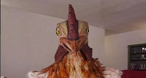 Buger King Resurrects Subservient Chicken Viral Campaign Under Premises Of Fowl Play   Digital-News on Scoop.it today   Scoop.it