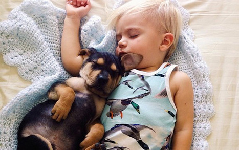 Dogs And Babies = Cuteness Overload (Photo Gallery) | Dog Love | Scoop.it