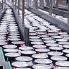Agroalimentaire Distribution Marketing et Alimentation