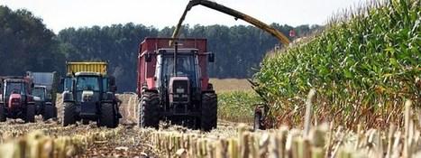 Sachsen: Ärger um Pachtflächen | MDR.DE | Agrarforschung | Scoop.it