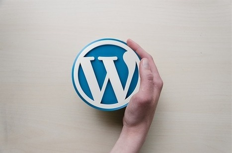 Starting A WordPress Website? Here Is How To Go Right   Web Development And Hosting   Scoop.it